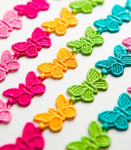 farfalla-multicolor