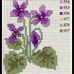 schemi punto croce - violette5