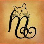 tatuaggio iniziale gatto