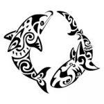 dolphin-shark